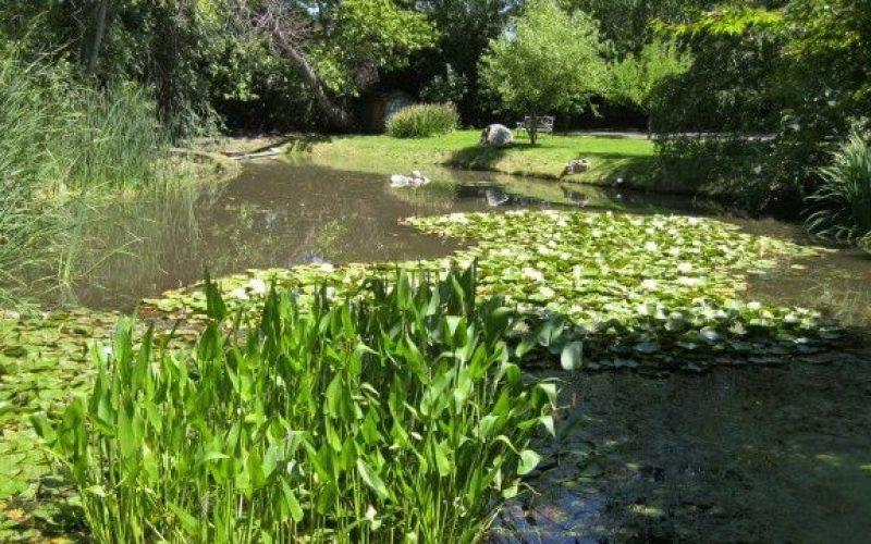 Hidden Springs True Intimacy
