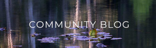 community-blog